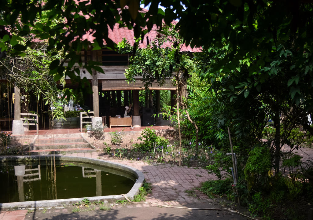 Projetos Ecologicos Vietna Help Us Renovate Our Permaculture Gard